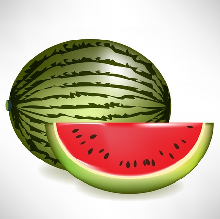 melon fruit: isolated juicy watermelon with slice