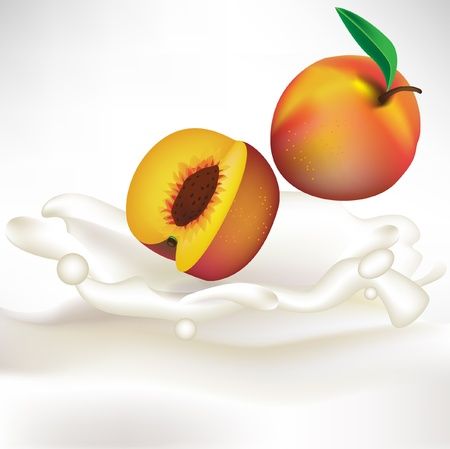 dipping: cream splash with apricot falling Illustration
