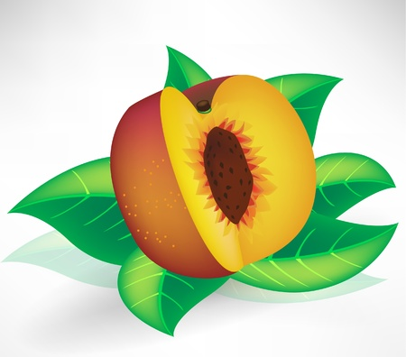 fresh peach isolated with leaves Stock Vector - 10852257
