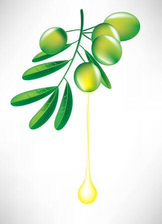 branch of olives with oil drop