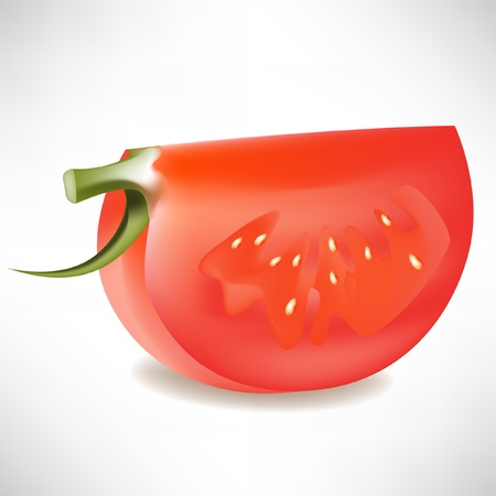 slice of tomato isolated on white Vector