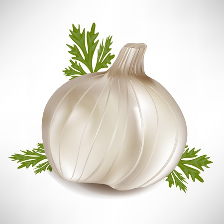 garlic with green parsley leaves isolated