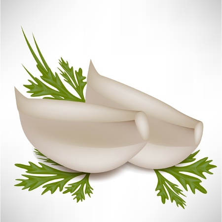 tinge: garlic cloves with parsley leaves isolated