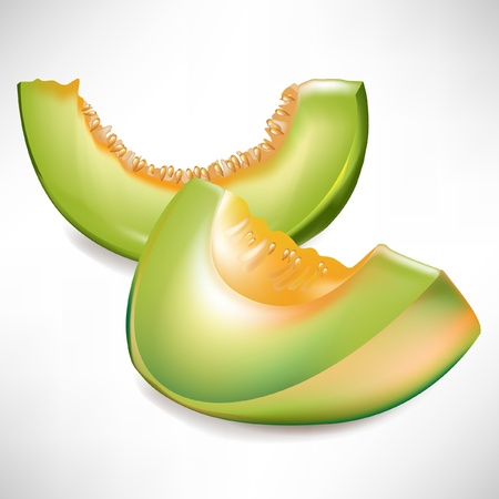 melon fruit: two slices of melon isolated Illustration