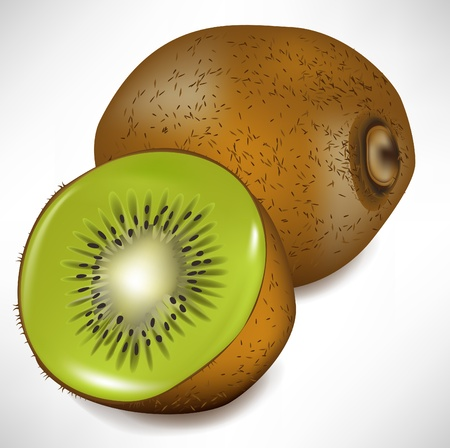 lateral view: kiwi fruit and lateral view of slice