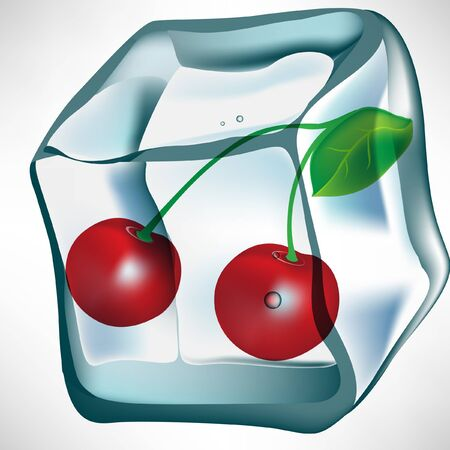 cherry in ice cube isolated Vector