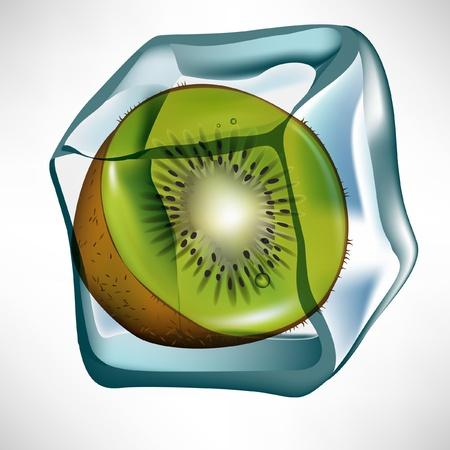 kiwi in ice cube isolated Stock Vector - 10887067