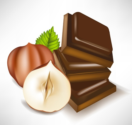 nutriments: chocolate pieces and hazelnuts isolated Illustration