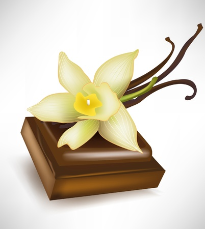 chocolate, tabletas y flor de vainilla