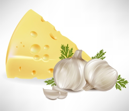 cheese and garlic isolated on white Stock Vector - 10886888