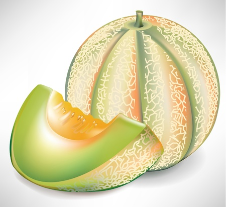 melon fruit: delicious yellow watermelon with slice