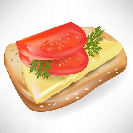 tomato on bread slice isolated Stock Vector - 10888039
