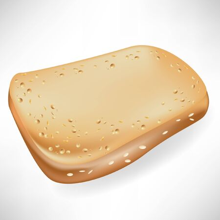 single slice of bread isolated  Vector
