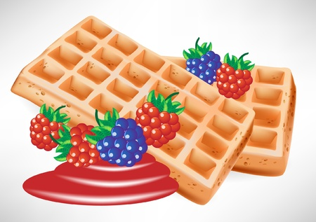 two belgian waffles with berry Stock Vector - 10887057
