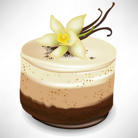 chocolate mousse cake with vanilla isolated Vector