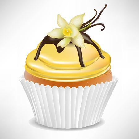 confection: vanilla cup cake isolated on white Illustration