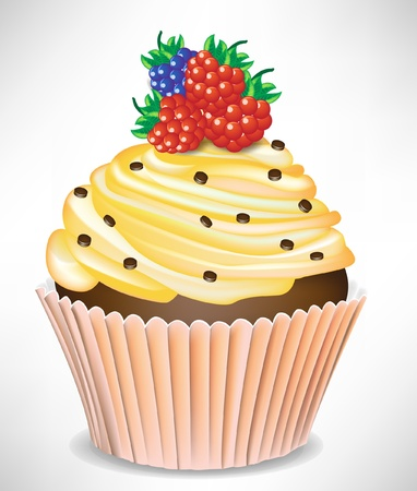 berry and vanilla cup cake isolated Vector