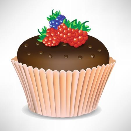 cup cakes: chocolate con bayas de torta de la taza aislados en blanco