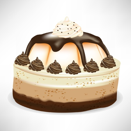 caramel chocolate mousse cake isolated on white Illustration