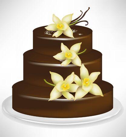 vanilla cake: elegant chocolate and vanilla cake isolated on white