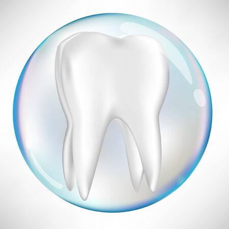 tooth in protection sphere isolated on white Vector