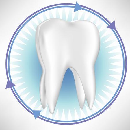 dientes con caries: diente con flechas de protecci�n aisladas en blanco