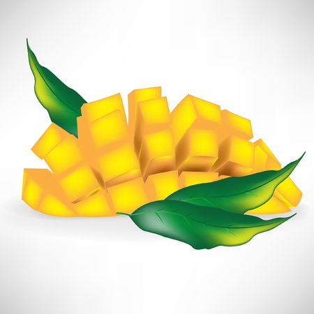 sliced mango isolated on white background with fresh leaves Stock Vector - 10888179