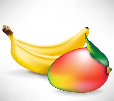 fruited: fresh whole mango fruit and two bananas isolated on white