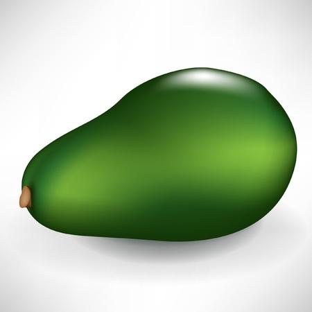 wholesome: single whole avocado fruit isolated on white background Illustration