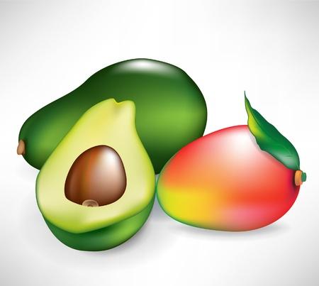 fruited: fresh whole mango fruit and avocado isolated on white