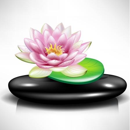 massage therapie: enkele spa steen  kiezel met lotus en blad Stock Illustratie