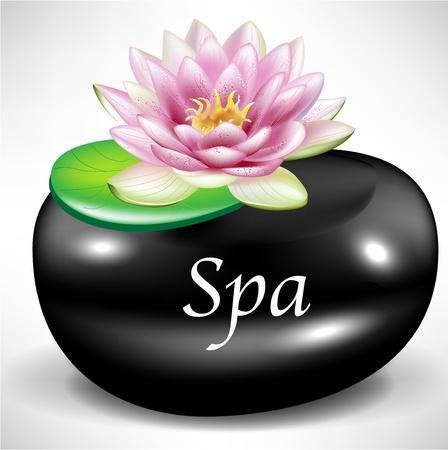 pebble: black massagespa pebble as background with lotus flower Illustration