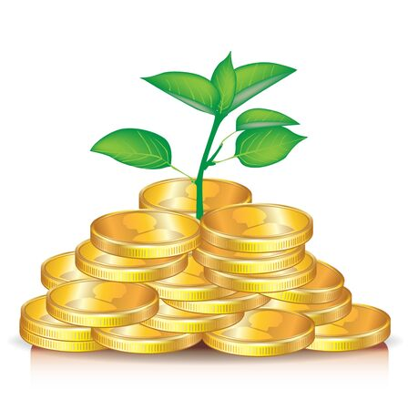plant growing from pile of golden coins Stock Vector - 11137388
