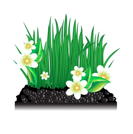 peat: garden grass with blossoming flowers and ground on white