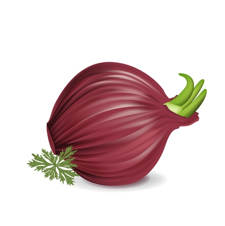 unpeeled: whole red onion with parsley isolated on white