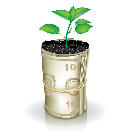growing money: roll of money and growing plant isolated