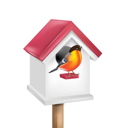 birdhouse with bird isolated on white