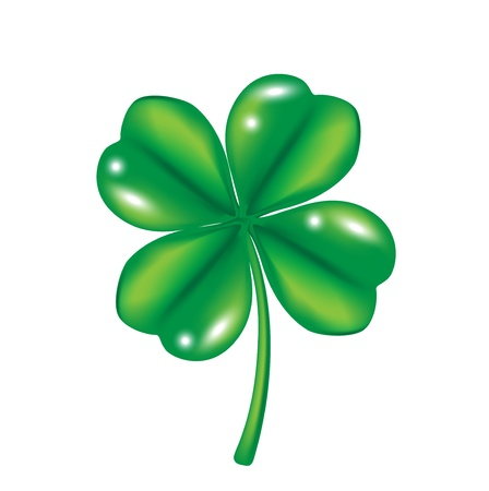 four leaf clover isolated on white Stock Vector - 14968985