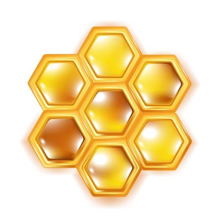 abejas panal: panal aislado en blanco bavkground