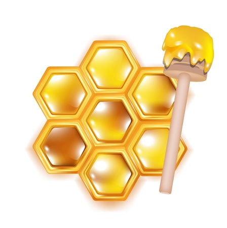 dipper: honeycomb with wooden dipper isolated