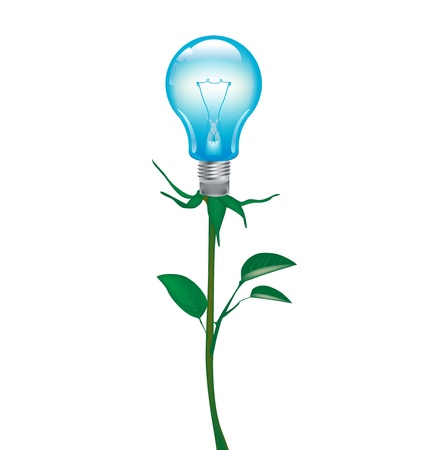lightbulb growing from plant isolated on white Stock Vector - 20203994