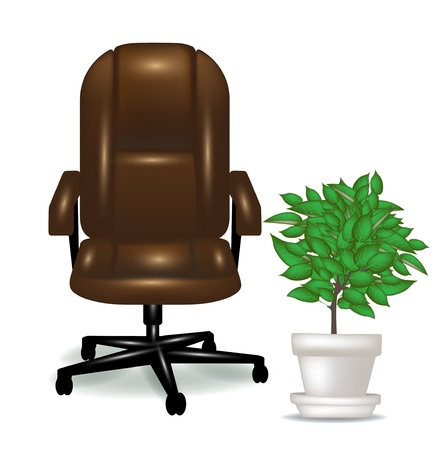 office ergonomic chair and plant isolated Vector
