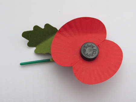 Poppy sold around rememberance day to raise founds for veterans Banco de Imagens