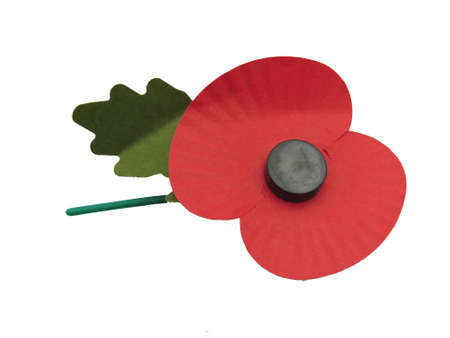 sacrifices: Poppy made of paper and plastic. These are sold in the UK every November in remembrance of the men who were killed or injured in defence of their country. Proceeds go to help support veterans of past and present conflicts.