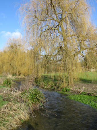 View of the river Meon which runs through the English village, Meonstoke in Hampshire, UK. Stock Photo