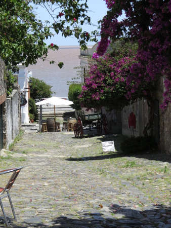 One of the old cobblestone streets in the Uruguayan town of Colonia de Sacramento. Imagens - 49648185