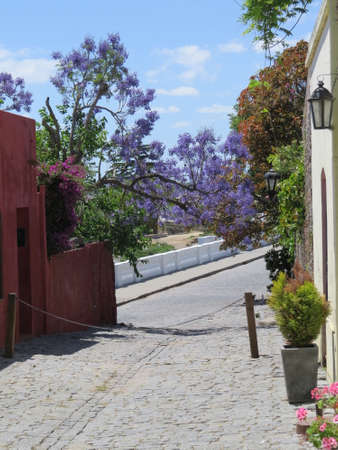 One of the old cobblestone streets in the Uruguayan town of Colonia de Sacramento. Imagens - 49648190
