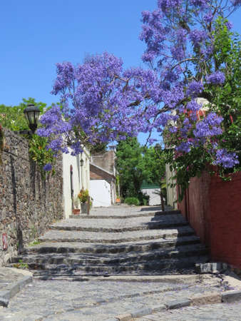 One of the old cobblestone streets in the Uruguayan town of Colonia de Sacramento. Imagens - 49648194