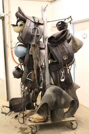 stirrup: Riding Equipment at a stables