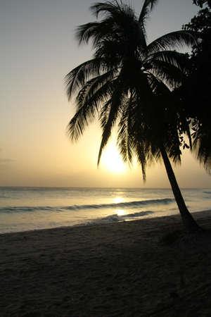 Coucher de soleil sur une plage de la Barbade. Banque d'images